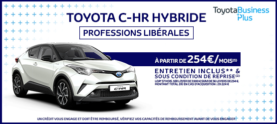 photo chr hybride professions liberales team toy 91